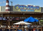 Case Study Omaddys Bar and Grille